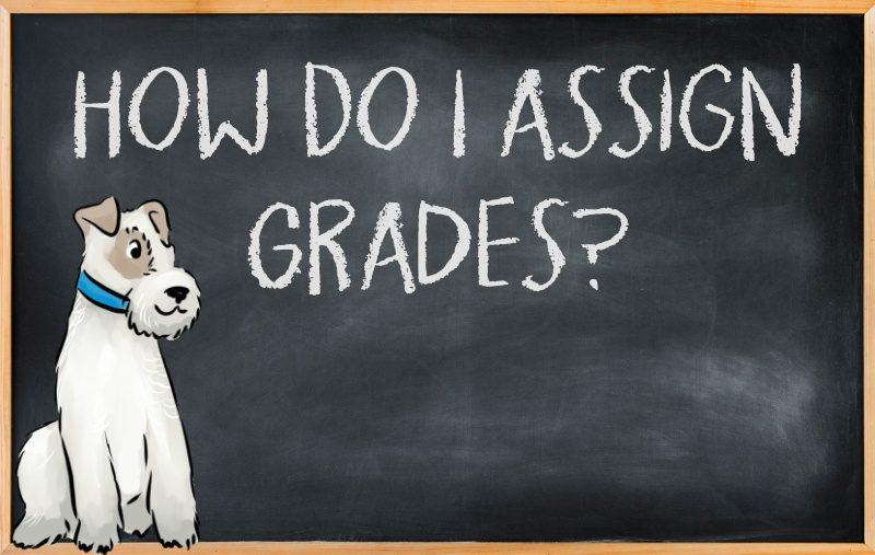 How to assign grades in your homeschool